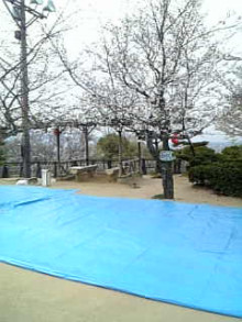 岩本社会保険労務士事務所 みかんの国愛媛で働く社労士のブログ-Image498.jpg