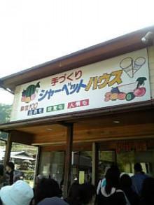 岩本社会保険労務士事務所 みかんの国愛媛で働く社労士のブログ-Image1035.jpg