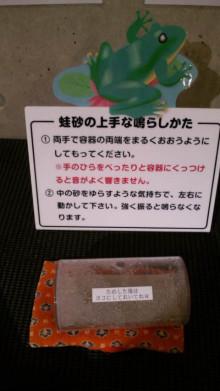 みかんの国愛媛で働く社労士岩本浩一-SBSH1131.JPG