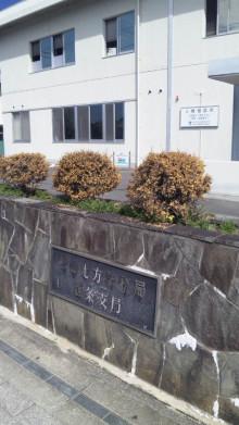みかんの国愛媛で働く社労士岩本浩一-SBSH1495.JPG