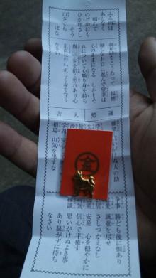 みかんの国愛媛で働く社労士岩本浩一-SBSH2101.JPG