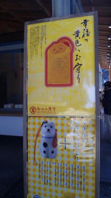 みかんの国愛媛で働く社労士岩本浩一-SBSH2107.JPG