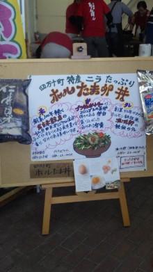 みかんの国愛媛で働く社労士岩本浩一-101212_105100.jpg