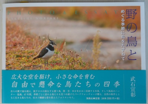 野の鳥と 4-1 0807