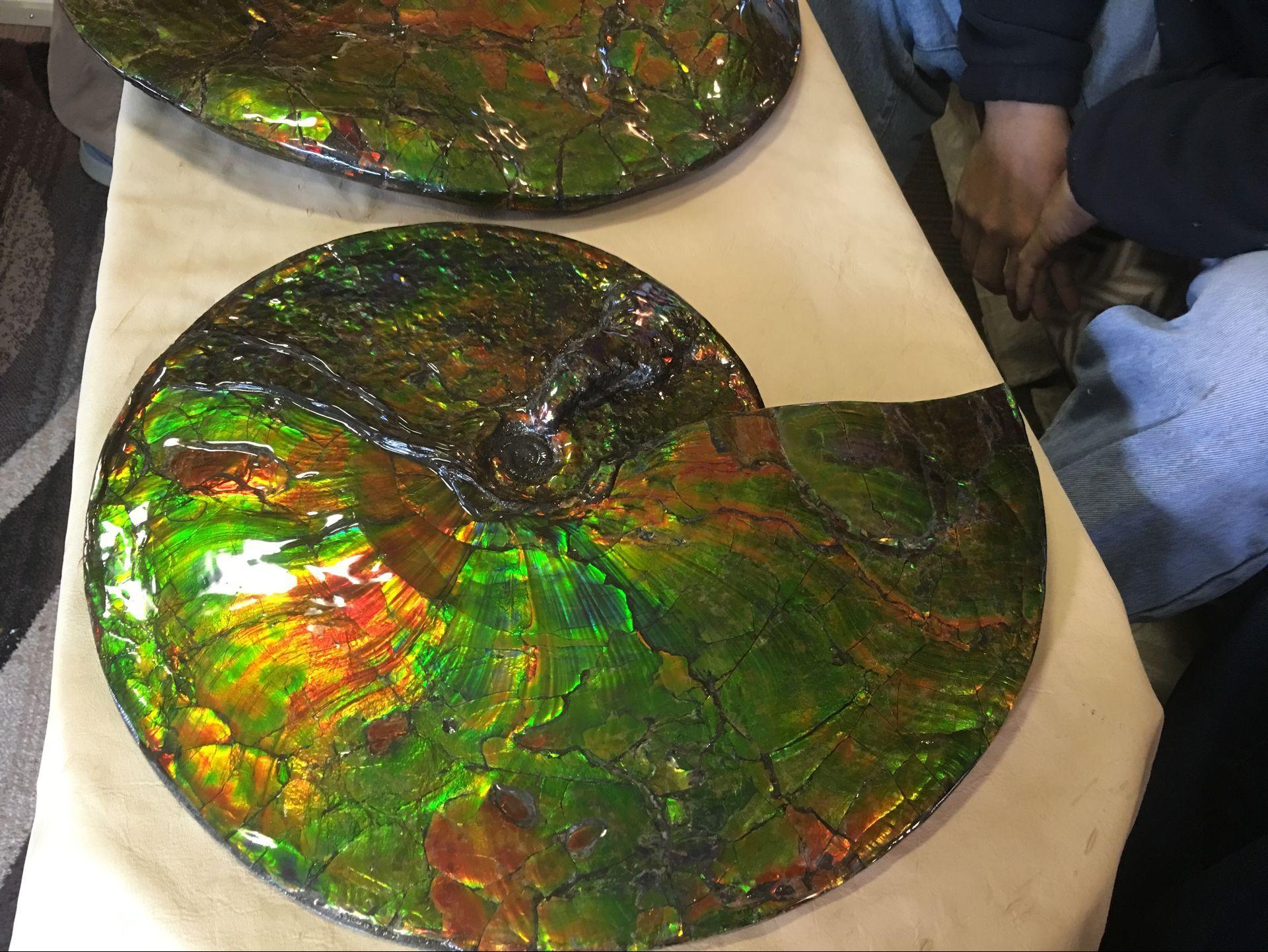 2016 斑彩螺 加拿大斑彩石 388000元 500万円