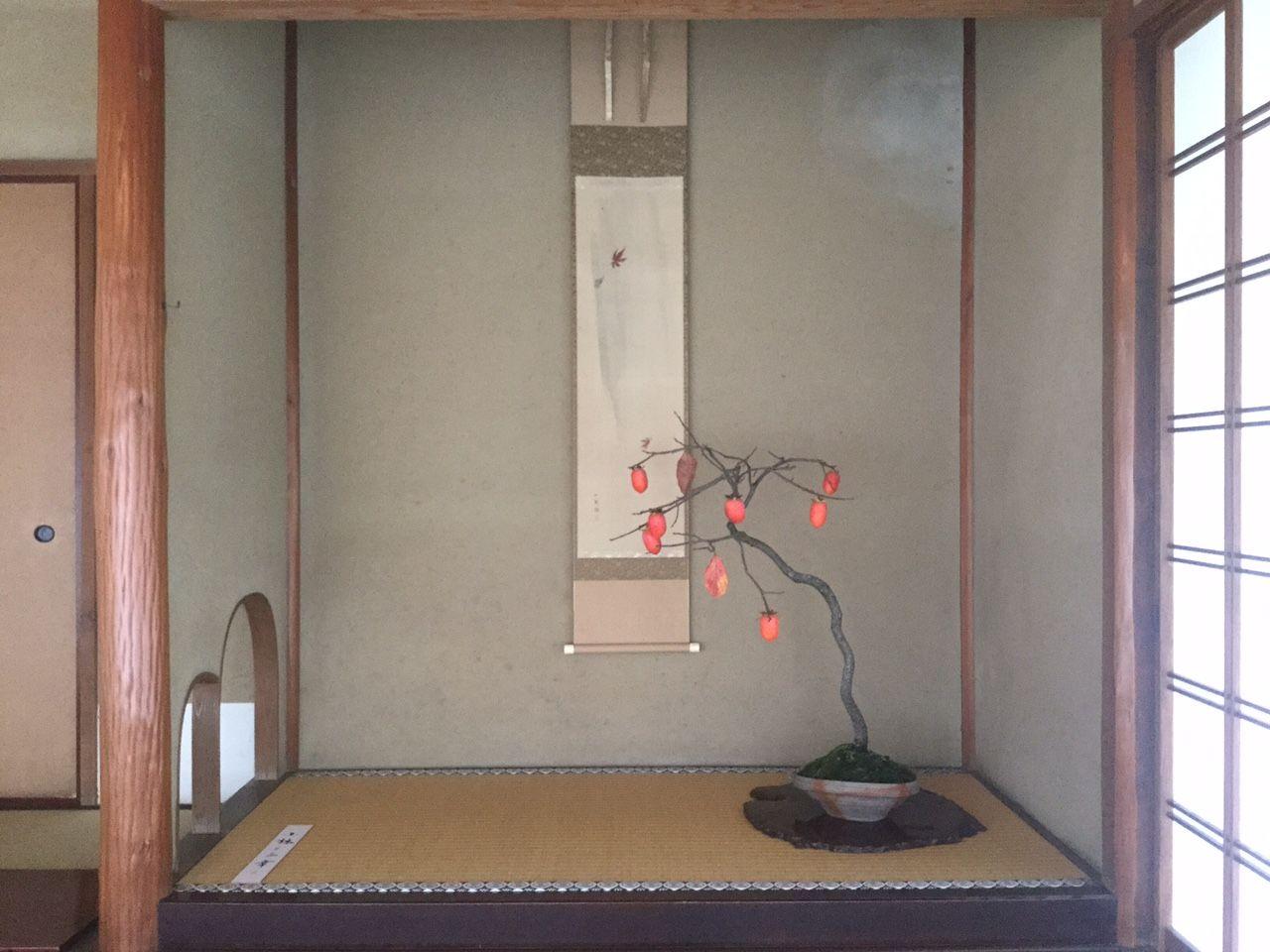 2016 水石飾り 盆栽飾り 山柿の一席