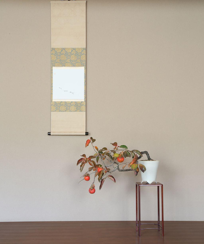 2016 水石飾り 盆栽飾り 山柿の一席1