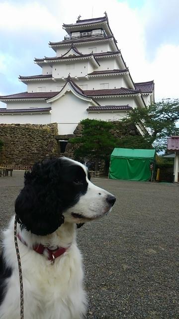 2016-07朝散歩(360x640)