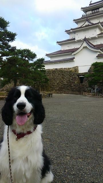 2016-07朝散歩1(360x640)