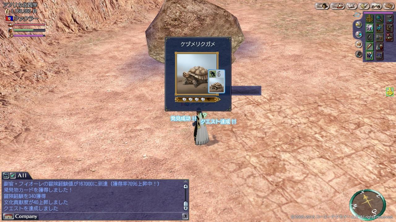 砂漠のカメ_2