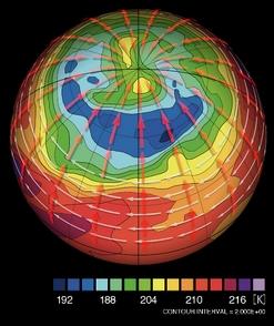 金星極域の温度分布