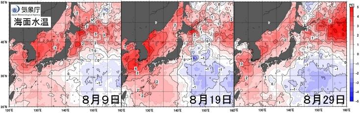 8月海面水温