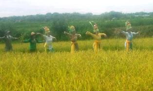 稲刈りダンス