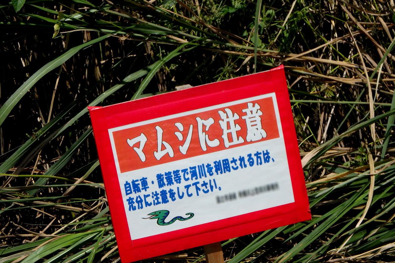 2016-07kasenjiki007.jpg