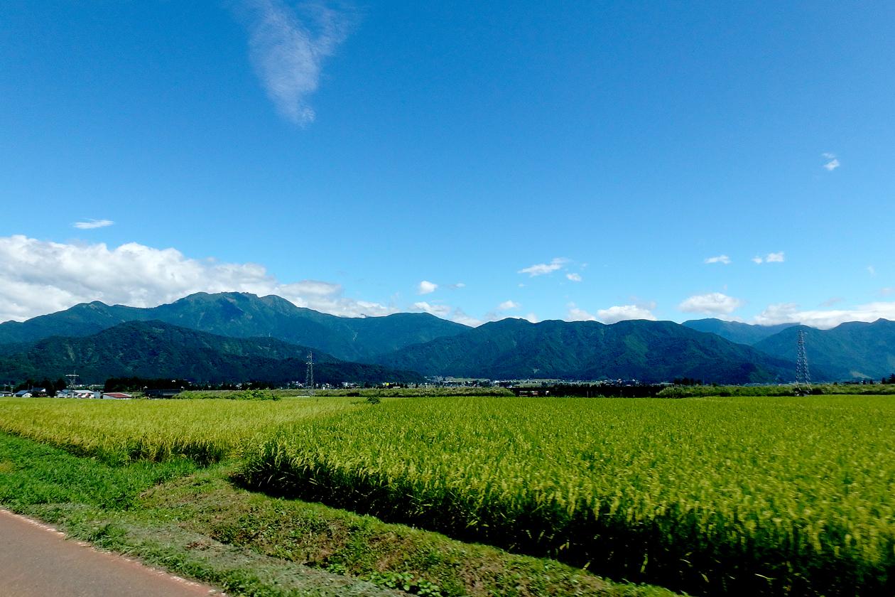 2016-08hakuba-uonuma044.jpg