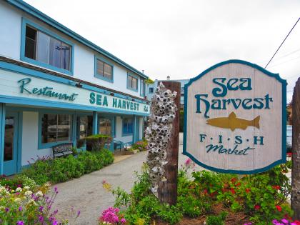 Sea Harvest Fish Market-13, 2016-6-9