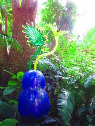 Dale Chihulyの世界/Atlanta Botanical Garden-14, 2016-7-12