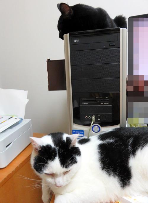 PCの上のチョコと机の上のちっぷ