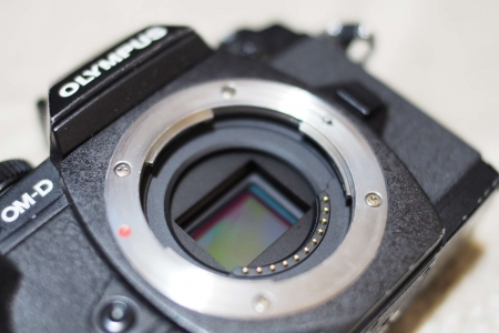 P9190001.jpg