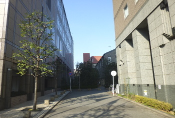 京都ホテルオークラ西側の道
