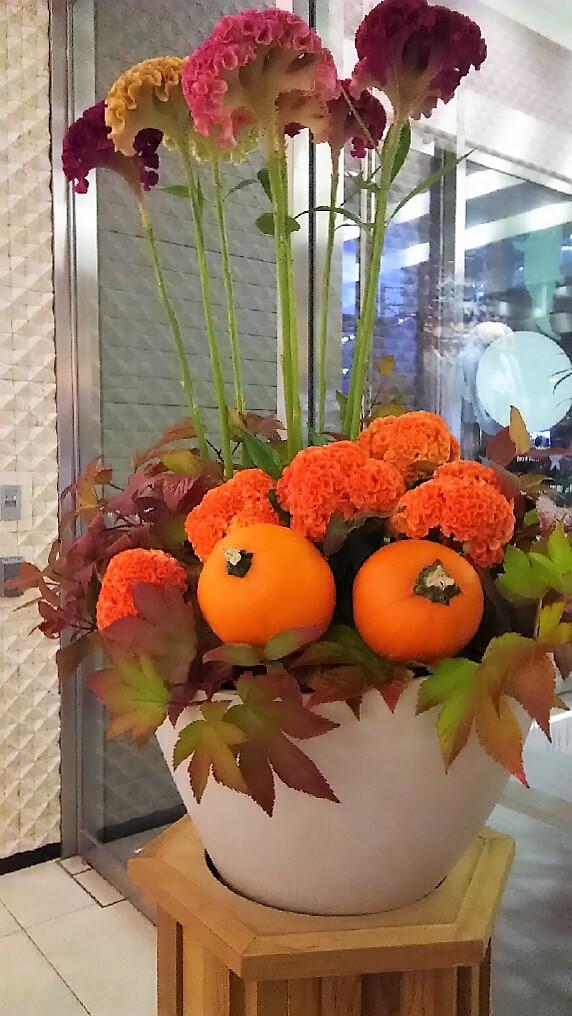 ハロウィンアレンジ二子玉