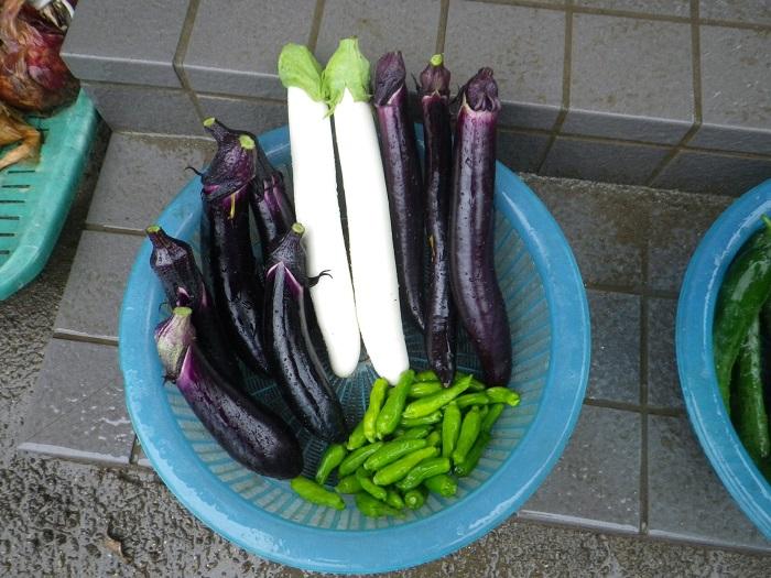 収穫2_16_07_09