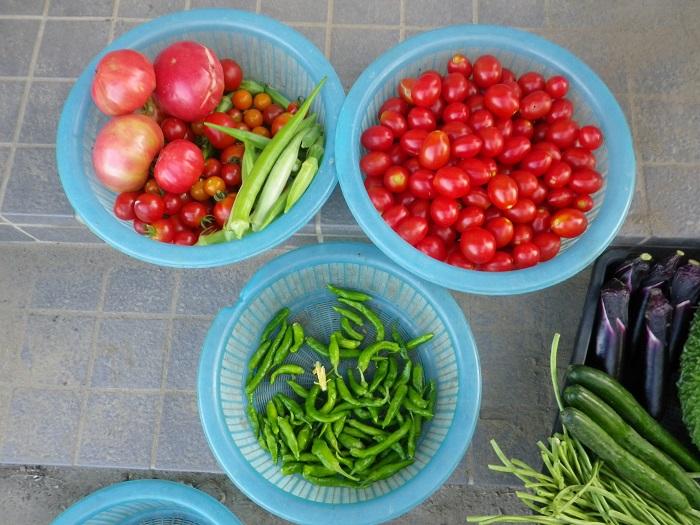 収穫2_16_07_29