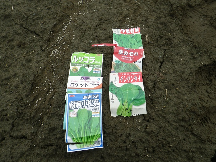 種蒔き2_16_09_18