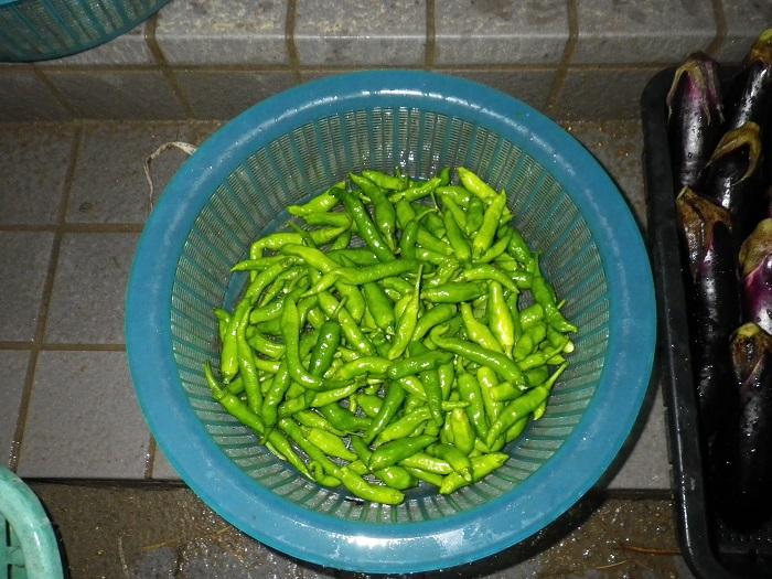 収穫2_16_09_29