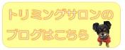 FREEWANのトリミングブログロゴ