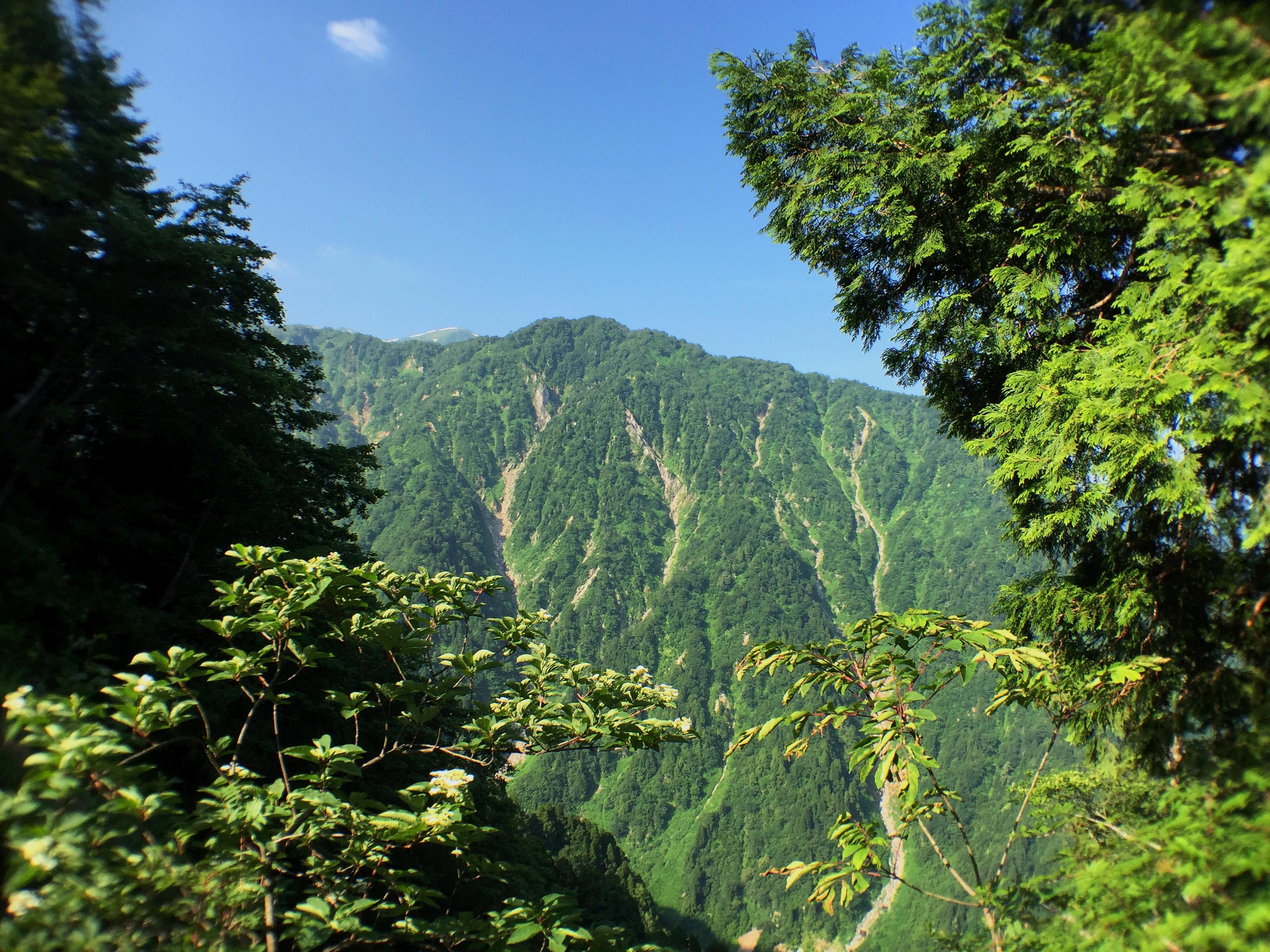 大日岳方面2