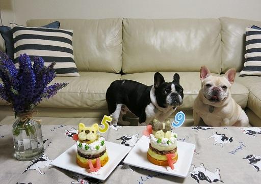 8-6ふるうたケーキ前2