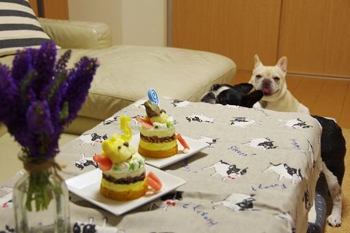 8-6ふるうたケーキ横から3