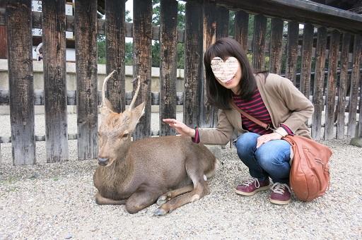 10-22興ママ鹿