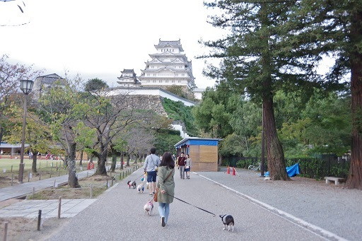 11-9お城散歩②