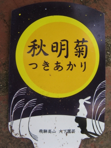20160914- (5)