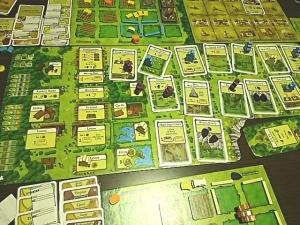 43_Agricola_Board1.jpg
