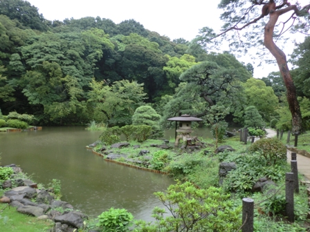 新江戸川6