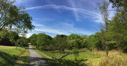 愛知県森林公園のパノラマ画像。