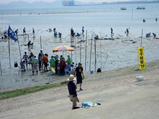竹島での潮干狩りの受付風景。