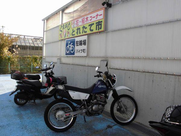 CIMG10045.jpg