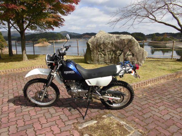 CIMG99351.jpg