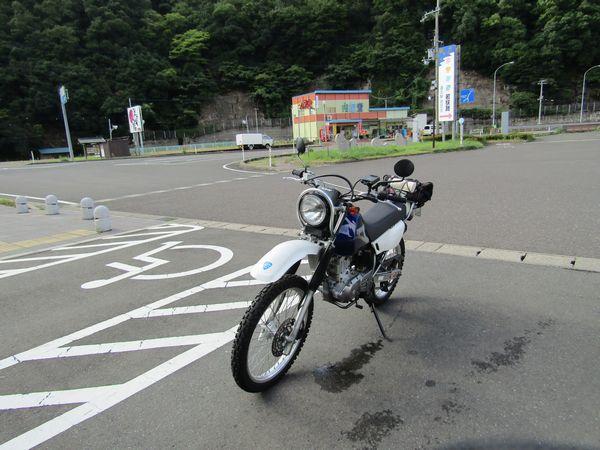 IMG_05381.jpg