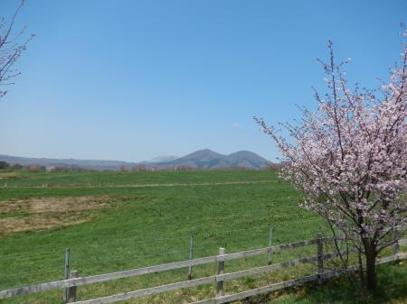 蒜山高原#2