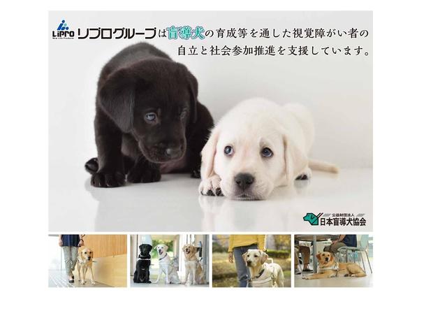 bloggif_5776f85f011d0.jpeg