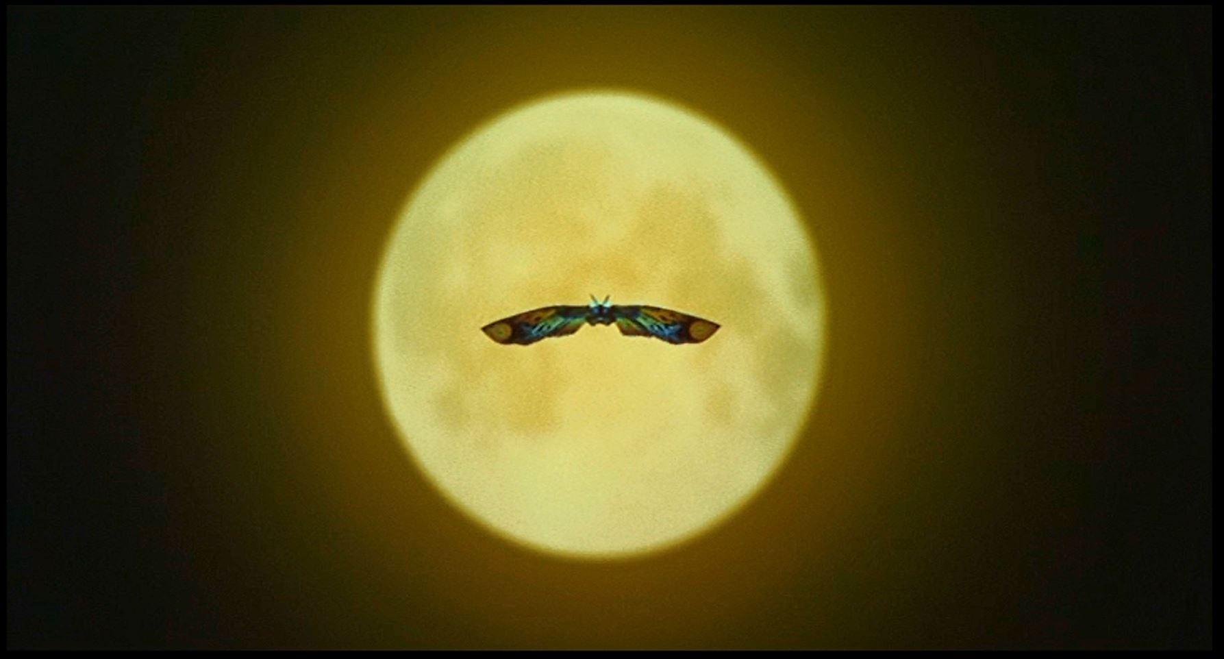 月光のモスラ