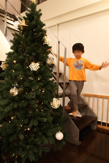 tree2_201611040011514da.jpg