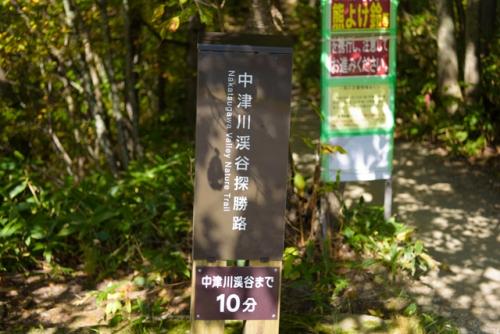 20161016-DSC_7867.jpg