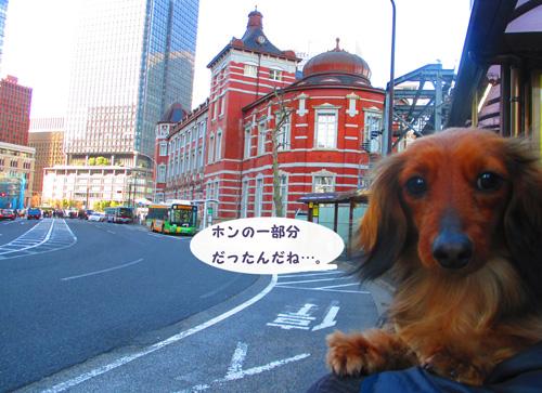 2016-3-tsukiji39.jpg