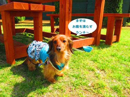 2016-4-hitachi13.jpg